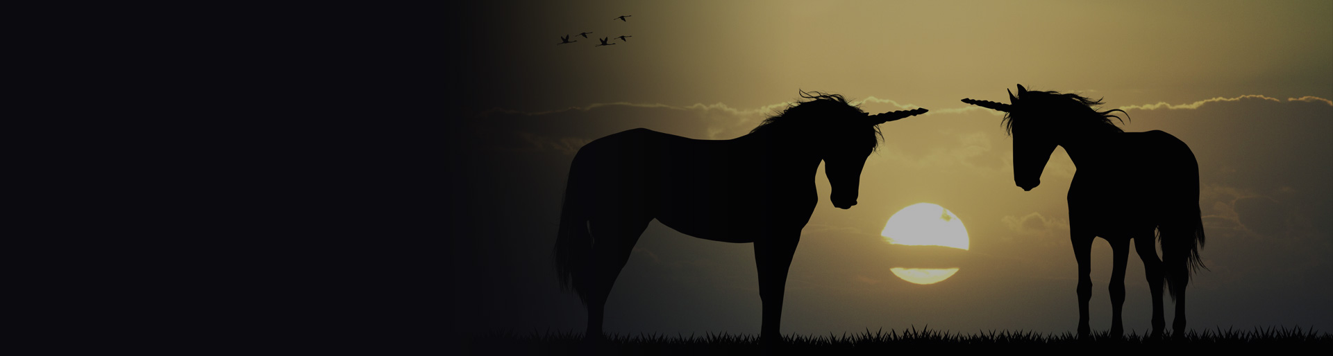 unicorn-background
